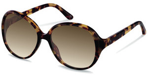 Claudia Schiffer C3006 B brown gradienthavana