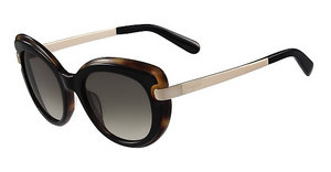 Salvatore Ferragamo SF813S 006 BLACK-HAVANA