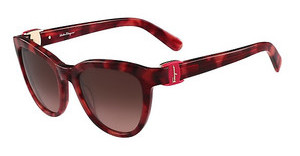 Salvatore Ferragamo SF817S 609 HAVANA RED