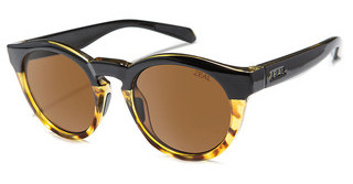 Zeal Crowley 11472 CopperBlack Tortoise